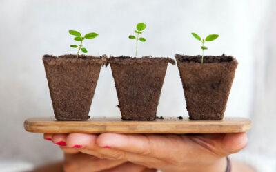 «Die fundamentale Bedeutung der Ernährung sollte uns endlich bewusst werden»